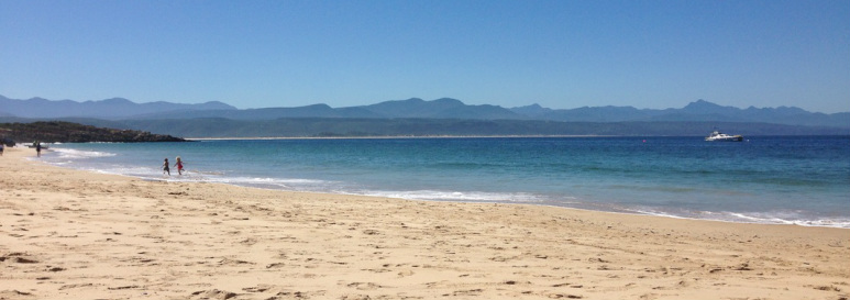 Lola and Lincoln running on Main beach in Plett, with the Cape Fold Mountains in the distance.