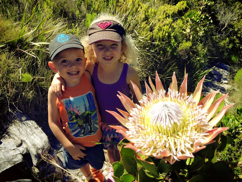 A valley of King Proteas!