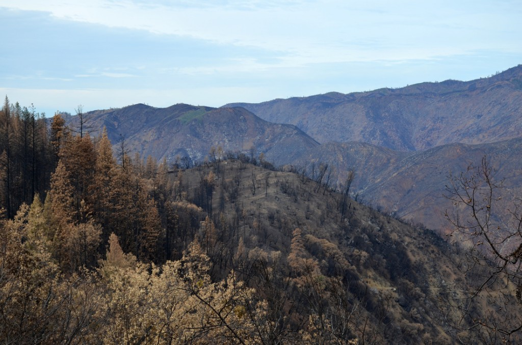 Apocalyptic wasteland - Part of Yosemite was caught in the 400 square mile fire that burned for 2 mo
