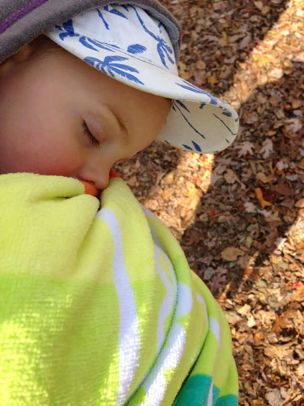 A hike too far, for our little 3 year old.