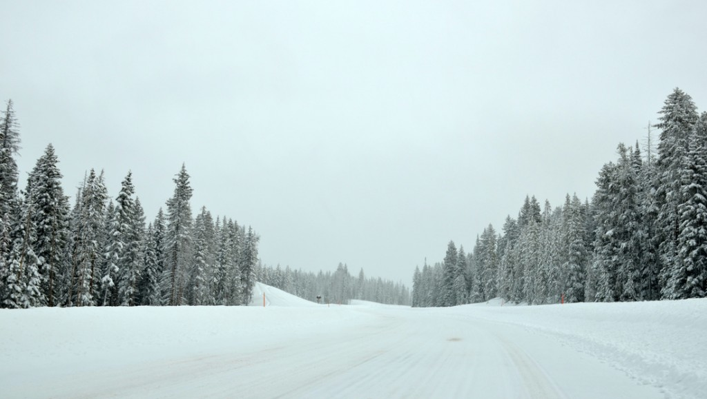 Our winter road